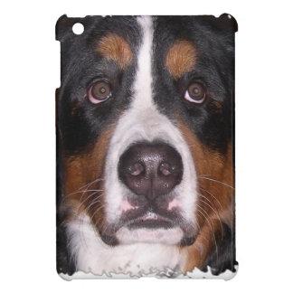 """: Bernese Gebirgshunde"""" """"großer Hunde"""" Hund iPad Mini Hülle"""