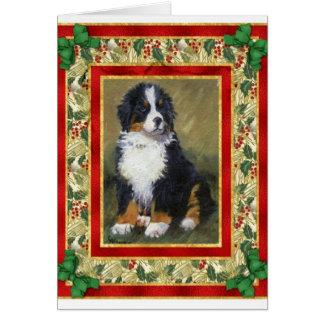 Bernese Gebirgshunderaum-Weihnachtskarte Karte