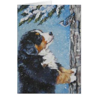 Bernese Gebirgshundeweihnachtskarte Karte