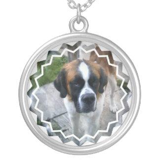 Bernhardiner-Hundehalskette Versilberte Kette