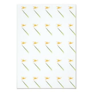 Bernsteinfarbig-Flügel ganz herum 8,9 X 12,7 Cm Einladungskarte