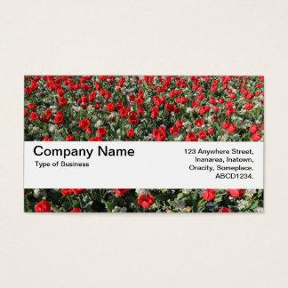 Beschaffenheits-Band V2 - rote Tulpen und Primeln Visitenkarte