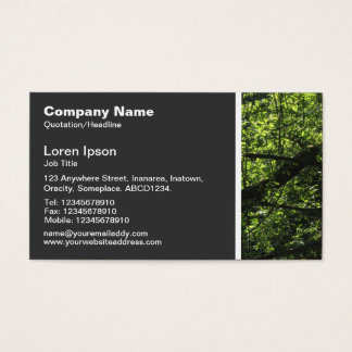 Beschaffenheits-Ton - Waldland 02 Visitenkarte