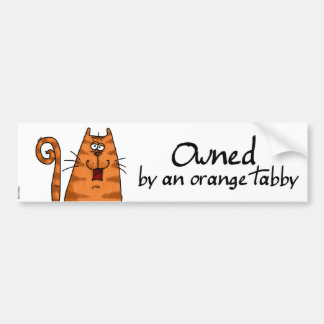 besessener orange Tabby Autoaufkleber