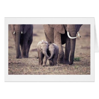 Beste Freund-Elefant Karte