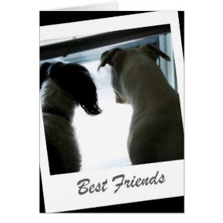 Beste Freunde Karte