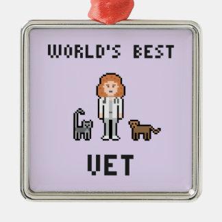 Beste weibliche der Tierarzt-Verzierung der Quadratisches Silberfarbenes Ornament