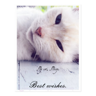 Beste Wünsche Postkarte