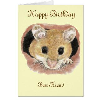Bester Freund-Geburtstags-Mäusegruß-Karte Karte