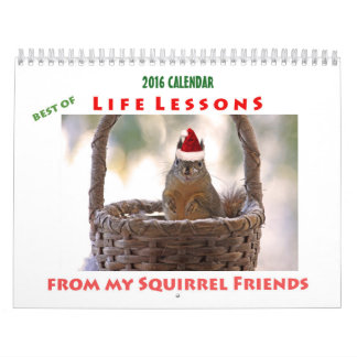 Bestes des Eichhörnchen-Kalender-2016 der Wandkalender