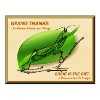 Betender Mantis, der Dank gibt Postkarte