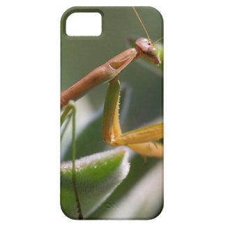 Betender Mantis-Insekt Etui Fürs iPhone 5