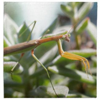 Betender Mantis-Insekt Stoffserviette