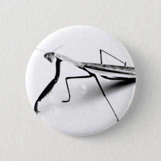 Betender Mantis-Sammlung Runder Button 5,1 Cm