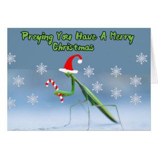 Betender Mantis-Weihnachtskarte mit Grußkarte