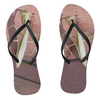 Betender Mantis-Zapfen Flip Flops
