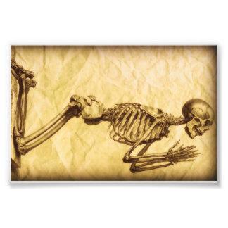 Betendes Skelett rechts Fotodrucke