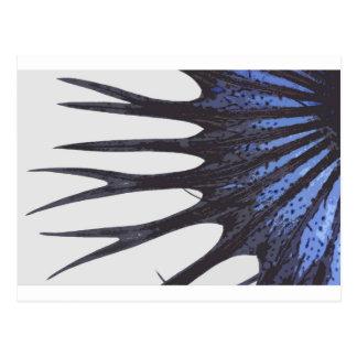 Betta crowntail postkarte