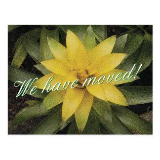 Bewegliche mit Blumenpostkarten mit gelber Blume Postkarten