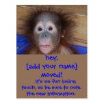 Bewegliche Mitteilungs-niedliches Gesicht Postkarten