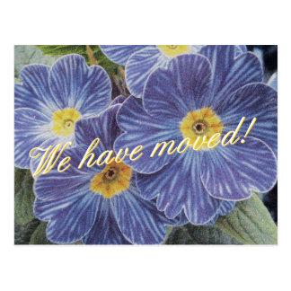 Bewegliche Postkarten mit blauem Blumenentwurf