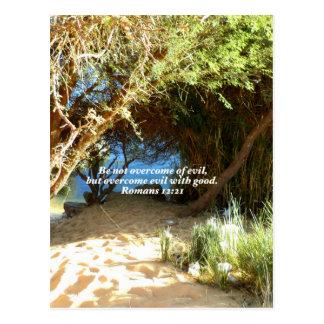 Bibel-Vers-Liebe-Zitat-Sprichwort-Römer-12:21 Postkarten