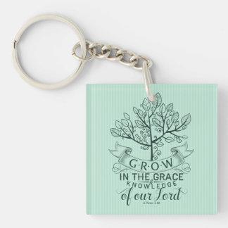 Bibel-Vers wachsen in der Anmut-Schlüsselkette Schlüsselanhänger