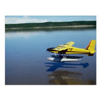 Biber, landend auf Fluss Postkarte