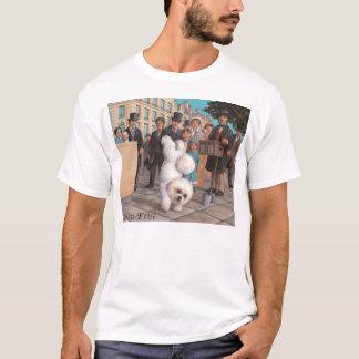Bichon Frisé Shirt