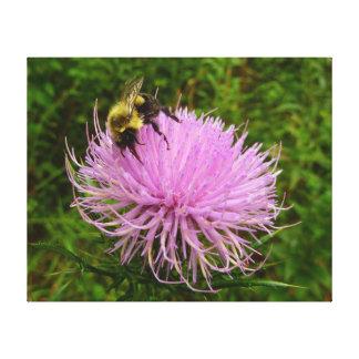 Biene auf Distel-Blume Leinwanddruck