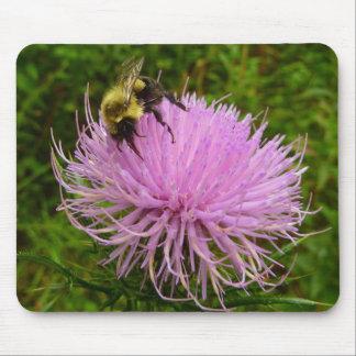 Biene auf Distel-Blume Mousepad