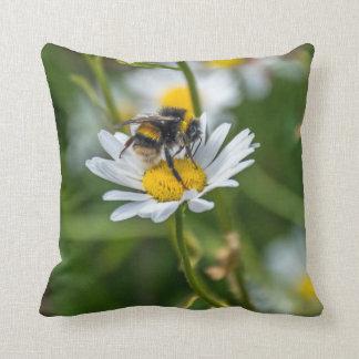 Biene auf einem Wurfskissen des weißen Kissen