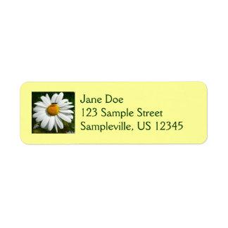 Biene auf Gänseblümchen-alaskischem Kleiner Adressaufkleber