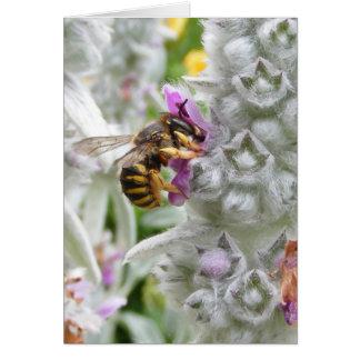 Biene auf Lamm-Ohr ~ Karte