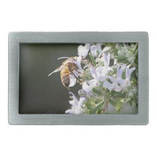 Biene auf Rosemary-Pflanze Rechteckige Gürtelschnalle