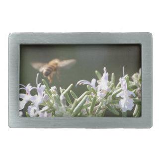 Biene auf Rosemary Rechteckige Gürtelschnallen
