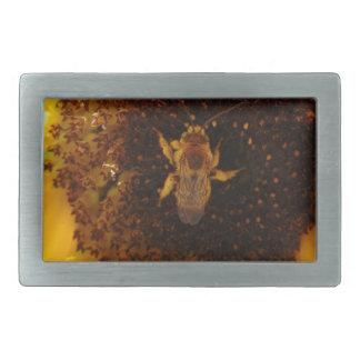 Biene, die eine Sonnenblume klettert Rechteckige Gürtelschnalle