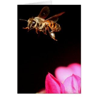 Biene im Flug Karte