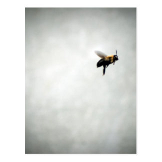 Biene im Flug Postkarte