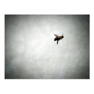 Biene im Flug Postkarten