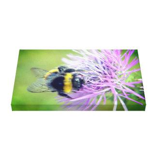 Biene Leinwanddruck