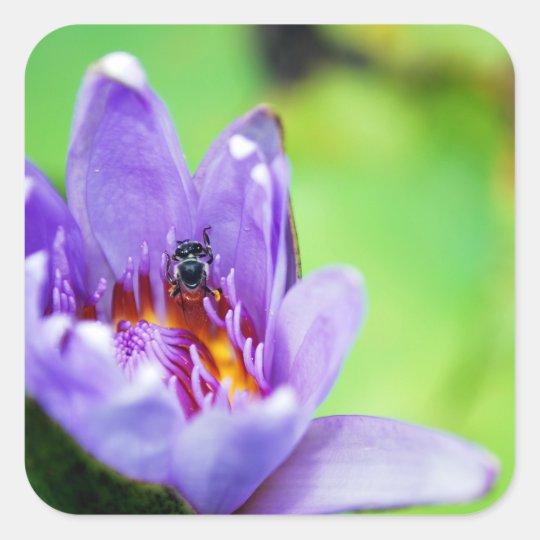 Biene Quadratischer Aufkleber
