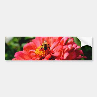 Biene und Koralle Zinnia Autoaufkleber