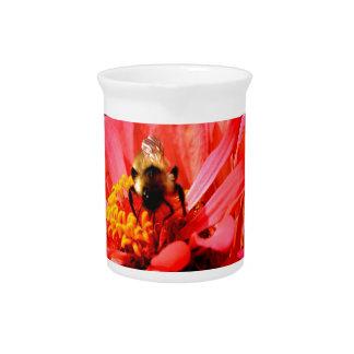 Biene und Koralle Zinnia Getränke Pitcher