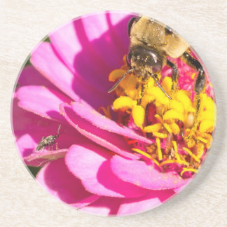 Biene und Wanze stehend auf einer lila Blume Untersetzer