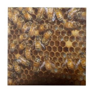Bienen-Bienenstock Keramikfliese