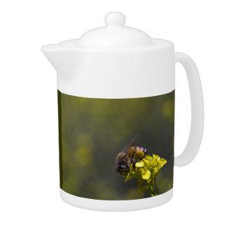Bienen-nahes hohes
