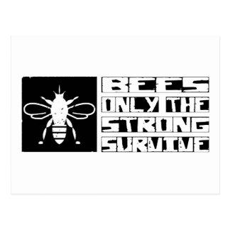 Bienen überleben postkarte