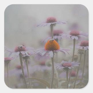 Bienen und die Kegel-Blumen Quadratischer Aufkleber