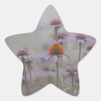 Bienen und die Kegel-Blumen Stern-Aufkleber